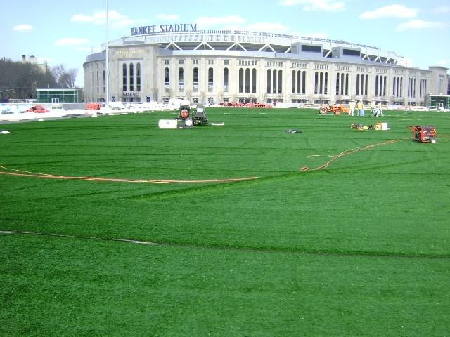 Yankee Green Roof.jpg